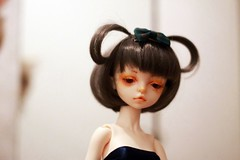 IMG_7659 (takeo m) Tags: flora dollzone