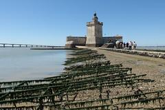 Fort Louvois, approche à marée basse (G. HyS) Tags: architecture charente