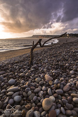 Crooked Tree (Owen J Carter) Tags: sunset tree beach pebble devon budleigh salterton