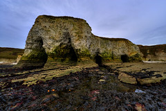 """FLAMBOROUGH BEACH & CLIFFS, FLAMBOROUGH, EAST YORKSHIRE, ENGLAND. (ZACERIN) Tags: sea lighthouse house nature paul chalk head united cliffs trinity years northern house"""" the in centenary flamborough """"united """" """"east """"christopher pictures"""" 1514 reserve"""" cliffs"""" photography"""" """"most of head"""" """"photos """"5th uk"""" kingdom"""" yorkshire"""" lighthouse"""" """"uk"""" """"pictures """"trinity """"hdr """"500 photograpy"""" """"england"""" lighthouses"""" stacks"""" 2014"""" """"zacerin"""" """"picures """"""""pictures """"flamborough """"flamborough"""" flamborough"""" flamborough's"""