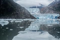_MG_4980a (markbyzewski) Tags: alaska ugly iceberg tracyarm southsawyerglacier