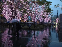 tree light reflection (squeezemonkey) Tags: trees decorations reflection rain station japan lights evening display fukuoka umbrellas commuters