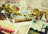 Fossils + Memories (SOMETHiNG MONUMENTAL) Tags: travel film skeleton polaroid toys fossil nikon bones roadsideattraction roadsideamerica dinosaurs d60 somethingmonumental mandycrandell