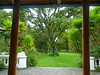 IMGP1032 (Scotty Nic) Tags: lucy hacienda otavalo cusin