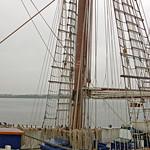 Rostock - Segelschiff »Santa Barbara Anna« im Rostocker Stadthafen (3) thumbnail