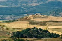 Sperlinga landscape (giuseppe_buccheri) Tags: trees castle landscape enna estate di sicily castello sperlinga sicilia paesaggio casolare campi coltivati