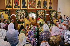 141. Престольный праздник в Адамовке