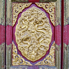 Dragon Door (Bill Thoo) Tags: forbiddencity palacemuseum beijing china palace museum travel monument imperial emperor royal historical door gilt gold dragon carving sculpture architecture decoration sony a7rii samyang 14mm ngc