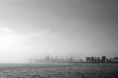 Faint (pantagrapher) Tags: city summer urban bw chicago skyline harbor haze nikon downtown seagull montrose d600