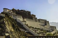 Potala Palace (P. Bhatt) Tags: poverty nepal mountain money landscape nikon god faith palace tibet lama lhasa kailash potala 5700 himalayas dalai monsarover