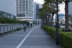 DSC01603 (Kouki Kuriyama) Tags: japan yokohama kanagawa  portside   nishiward
