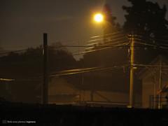 Noite chuvosa (Rgis Cardoso) Tags: street light luz rain night canon poste chuva noite rua fios limeira sx160 regisness