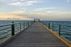 The bridge (Aisha Altamimy) Tags: