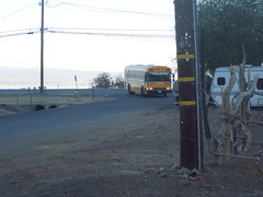 School Bus (kevin42135) Tags: california blue school lake bus bird ford high highway all thomas hwy upper american a3 re 20 lucerne conventional elementary a3re