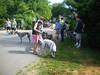 7-22-2012ArnoldArboretum005