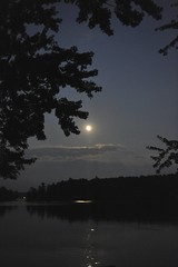 Moon Light Feels Right (dnoseworth) Tags: thanksgiving family flowers camping autumn trees girls friends light sunset red wild summer portrait sky woman plants moon canada mountains colour reflection art beach home nature water leaves gardens night clouds forest sunrise canon reflections landscape fun boats outdoors photography grey photo amazing interesting fishing nikon holidays moody cityscape waterfoul waterfront natural wildlife cottage tranquility things nighttime mysterious handheld northamerica moonlight digitalcamera hunter nautical wilderness watersports sailboats nikkor 2009 naturephotography outdoorsports bobslake d700 iphoneography dnoseworth