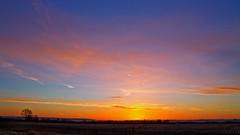 Coloured Sunrise Sky (Rob Felton) Tags: trees winter light sunset sky cloud sun tree silhouette skyline clouds sunrise skyscape bedford bedfordshire flare felton cloudscape lumen cardington robertfelton