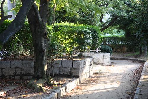 緑地公園の道