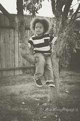 (Krista Cordova Photography) Tags: boy tree fall kids children brother cutekids hispanicchildren africanamericanchildren
