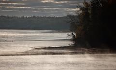 DSC_0012 Cardigan Morning (normaltoilet/ LSImages) Tags: morning sunlight mist misty river dawn daylight october princeedwardisland shining pei cardigan daybreak 2013 cardiganriver