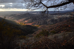 Changing Seasons (DirtyBootPrints) Tags: life wild west color nature landscape death nikon colorful quiet peace earth live watch hard canyon wait nikkor patience exploringgaze