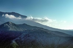 Forest felled by the Mount St. Helens Blast (Wernher Krutein) Tags: travel trees usa nature forest landscape volcano washington scenery natural geology wilderness washingtonstate volcanic scenes mtsthelens scenics natuire cascademountainrange geoform