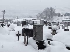 cementerio a la japonesa