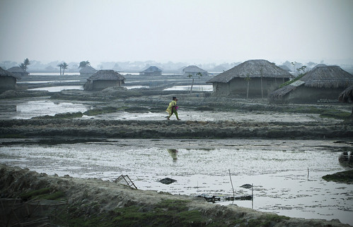 A woman walks the path between swamps in Khulna, Bangladesh. Photo by Felix Clay/Duckrabbit.