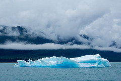 _MG_4896a (markbyzewski) Tags: alaska ugly iceberg tracyarm