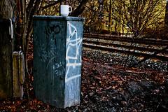 Oslo city graffiti: DAME (eksplosjon) Tags: oslo norway graffiti norge vandalism dame tagging hrverk oslograff