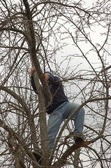 "Steve in the Tree <a style=""margin-left:10px; font-size:0.8em;"" href=""http://www.flickr.com/photos/91915217@N00/13528347573/"" target=""_blank"">@flickr</a>"