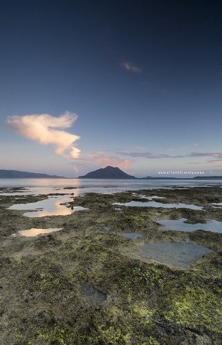 Kepa Island Beach