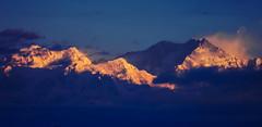 Kanchanjangha range (Sougata2013) Tags: india mountain tourism nature sunrise nikon hill himalaya bengal darjeeling bangla westbengal snowpeak himalayanrange kanchanjangha sonarbangla kanchenjungarange mountkanchenjunga nikoncoolpixl120