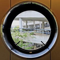 round window (Leo Reynolds) Tags: window round squaredcircle 4s iphone iphoneography iphone4s xleol30x sqset106 groupiphone xxx2014xxx xxgeotaggedxx