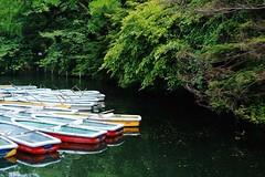 Untitled (Cho_Be) Tags: park japan tokyo pond fujifilm