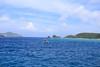 IMG_2490 (griffey_kao) Tags: okinawa akajima 阿嘉島 沖繩