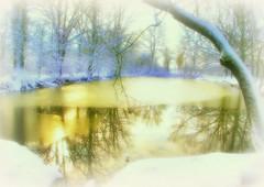 * Un altro laghetto d'inverno * Another small lake in winter * (argiagranuzzo1) Tags: bologna campagna emiliaromagna italy laghetti inverno neve alberi ghiaccio riflessi smalllake winter snow trees ice reflections countryside