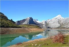 Embalse de Riaño - León (Luisa Gila Merino) Tags: embalse león agua nieve paisaje montañas montañaleonesa cordilleracantábrica arboleda serenidad reflejos airelibre riaño salvapantallas