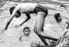 Plunge (A. Yousuf Kurniawan) Tags: kid boy monochrome blackandwhite swimming swim fun play happy villagelife villager indonesia face expression dailylife water river riverlife fibbonaci