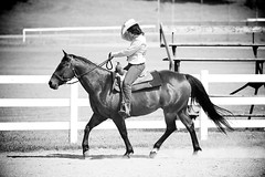 Horse Show (JustJamieLeigh) Tags: horse horses horseshow show horsebackriding horseback riding girl girls cowgirl equestrian equines equine western westernriding westernpleasure blackandwhite monochrome