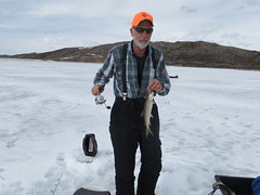 Dave With A Lake Trout (fethers1) Tags: icefishing fishing williamsforkreservoir laketrout