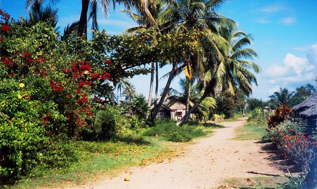 Madagascar2002 - 64