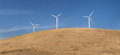 Altamont Pass Wind Farm Windmills (BillChristian) Tags: panorama canon wind farm pass windmills 135mm altamont 6d flickrstock