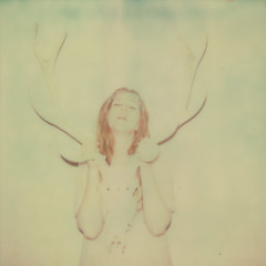 deery me (Your Heart's Desire) Tags: polaroid skull px70 impossibleproject colorprotection