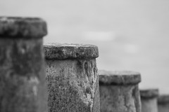 Groyne Close up (SMugridge) Tags: wood old sea black beach canon 350d blackwhite moss filter nd eastbourne groyne density 70200mm neutral