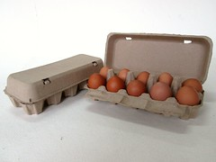 กล่องไข่กระดาษ pulp mold egg box-4