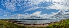 Moray Firth (RossElder) Tags: ocean sea summer panorama hot slr water landscape coast scotland george nikon warm view fort scottish sunny panoramic dslr moray inverness firth fortgeorge morayfirth ardersier panoramicview d7000 nikond7000