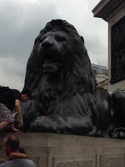 London, July 2013 (radekhlasnik) Tags: friends london towerbridge squirrel tube trafalgar bigben kingscross buckingham primrosehill candem hollandpark uploaded:by=flickrmobile flickriosapp:filter=nofilter