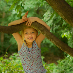 Adorable Granddaughter (Rick Smotherman) Tags: wood trees summer nature leaves kids canon garden children outdoors 50mm morninglight backyard cloudy sister overcast 7d grandkids cloudysky canon7d