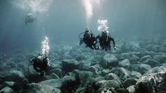 stlucia2013127 (Mark Edley) Tags: st coral four underwater sandals scuba diving panasonic micro lucia wreck reef sponge lionfish moray thirds gf1 daini lesleen koyomaru